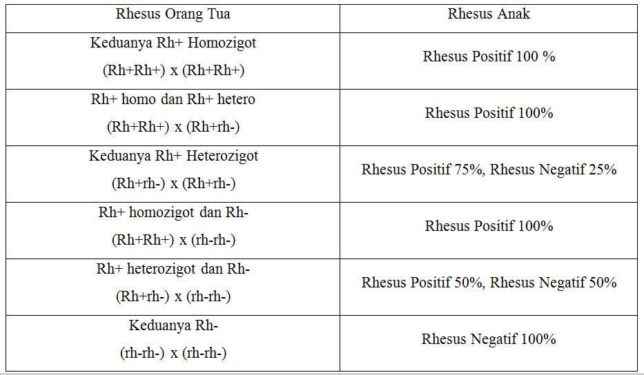 Pewarisan Golongan Darah Sistem Rhesus Contoh Kasus Donordarah Info